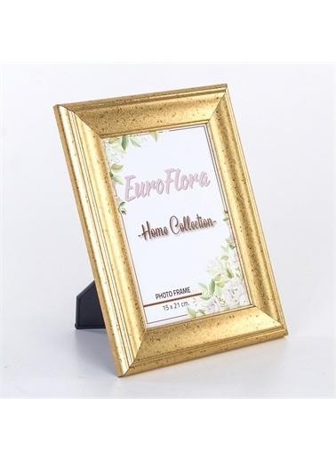 Euro Flora Euro Flora Dekoratif Çerçeve 15X21 Cm Renkli